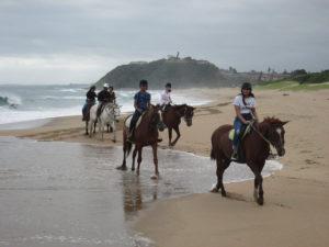 Group of tourists riding horses along the seashore