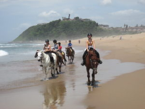 Horse Riding Group on Beach