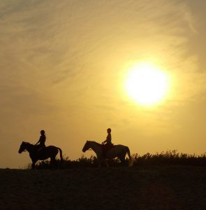 Romantic, Riding horses off into the sunset. Perfect for a couple
