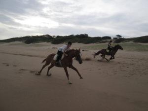 Enjoying a gallop down the beach